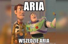 Więcej o: ARIA, wszędzie ARIA